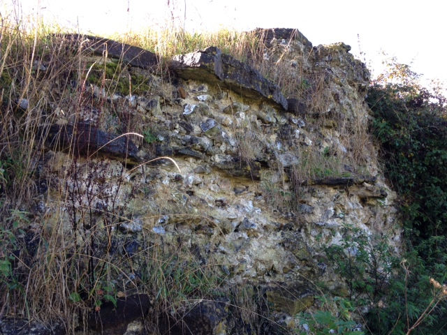 Silchester Roman Walls